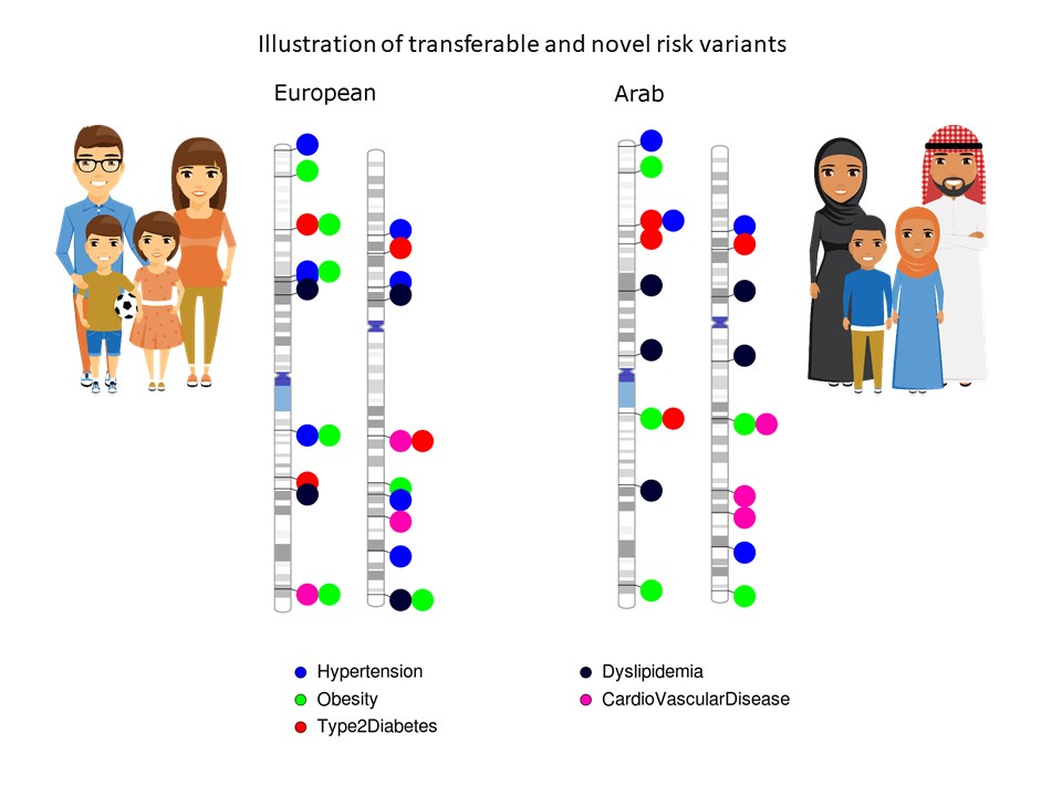 illustrations-of-european-arab-families-genetics-v2